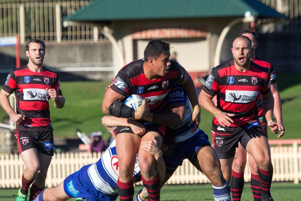 Forward Anthony Cherrington in attack for the Bears - Intrust Super Premiership | Round 16 | North Sydney Vs Canterbury-Bankstown | North Sydney Oval | 25/05/2017. Photo Steve Little www.redandblackzone.com.